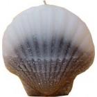 Kagyló alakú gyertya  2206